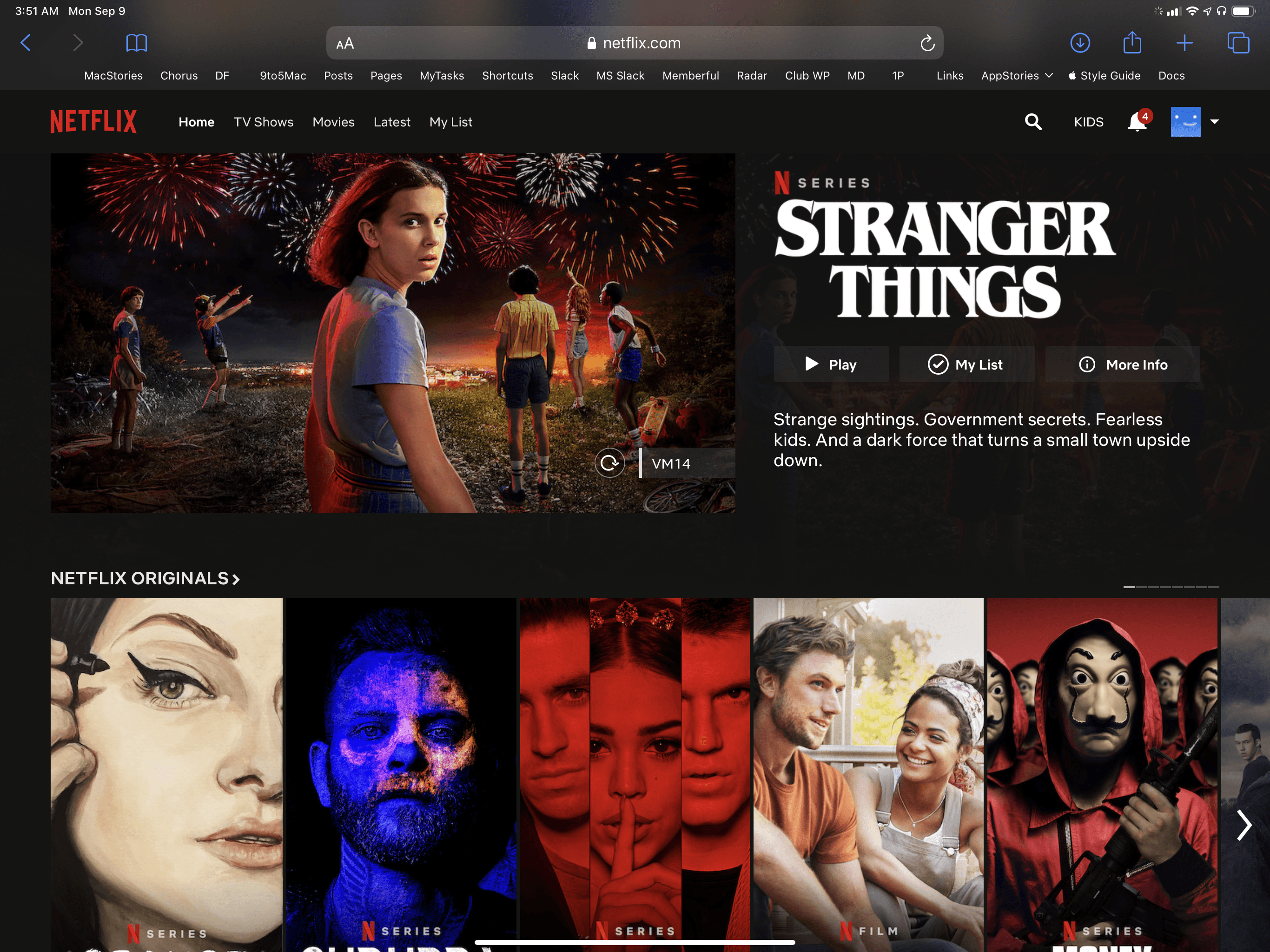 Due to DRM, it's impossible to take screenshots of Netflix's web player on iPadOS, but it fully works in Safari.